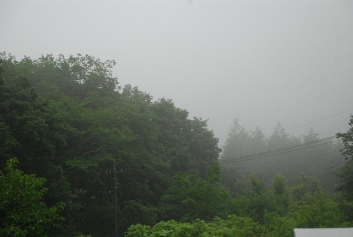 雨にけぶる山16