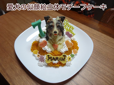 20141226愛犬の似顔絵立体モチーフケーキ♪【MARIN】