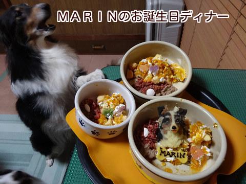 MARINのお誕生日ディナー