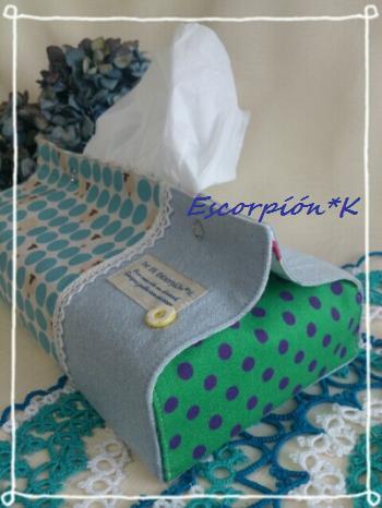 tissuecase1.jpg
