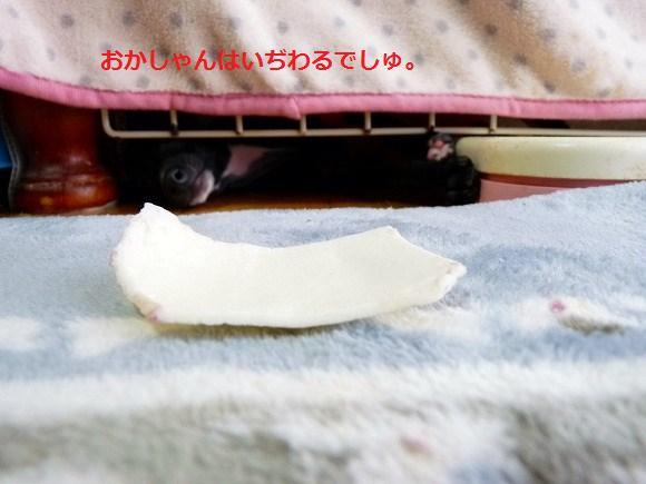 anana-3.jpg