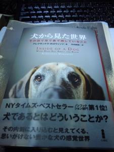 書籍のご紹介 「犬から見た世界」 :エクステリア横浜(愛犬と過ごすお庭空間のご相談をお受けしています。)