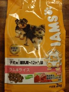 アイムス ラム&ライス 子犬用ドックフード :エクステリア横浜(愛犬と過ごすお庭空間のご相談をお受けしています。)