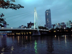 造幣局近くの川(2012年6月)