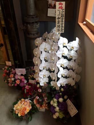 0122花