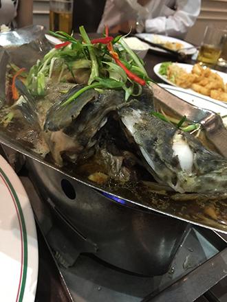 0305魚