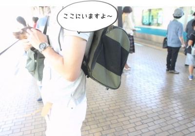2015_05_04_9999_1.jpg