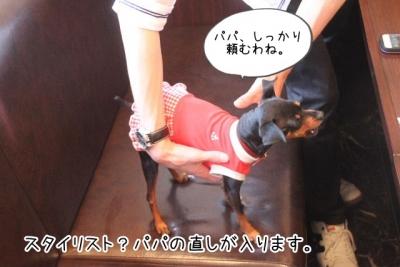 2015_05_04_9999_94.jpg