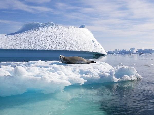 Air Esky 01 20150625_Antarctica02