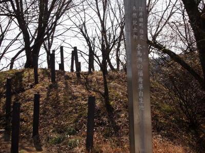 木馬瀬の福寿草自生地
