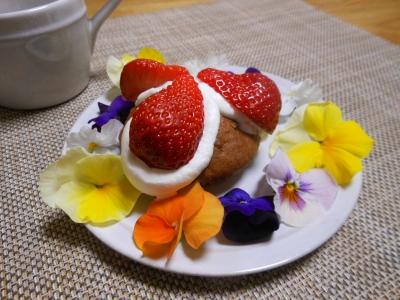 U_studiomimosaBDケーキ