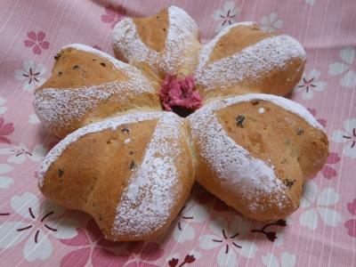 P_studiomimosaさくらパン