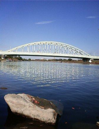 2010.11.16多摩川