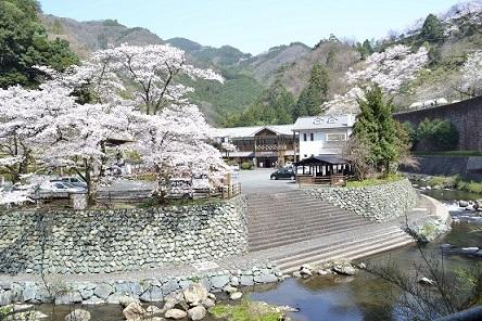 ①ふるさとの宿・桜