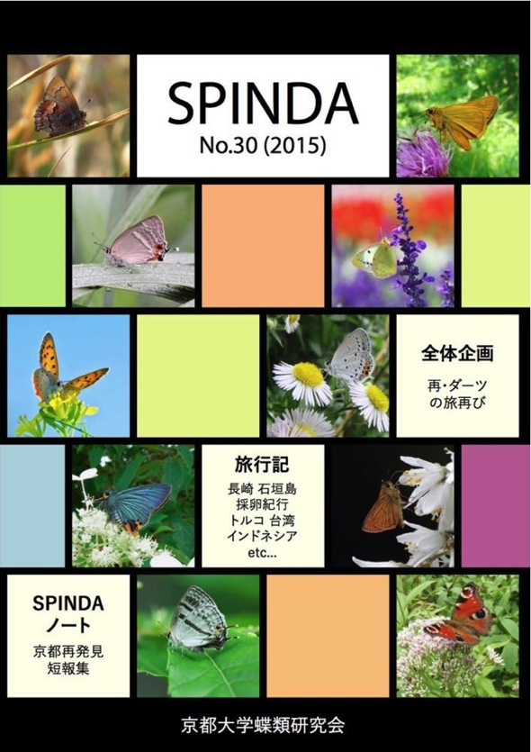 SPINDA30.jpg