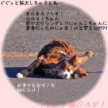 150110_4472b.jpg