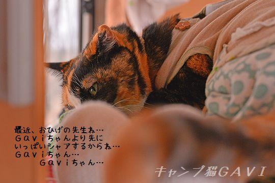 150314_7368a.jpg