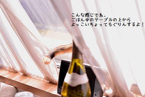 150505_1208.jpg