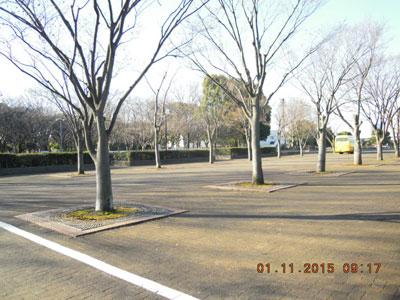 DSCN海老名運動公園jpg
