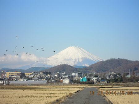 今日の富士山141227