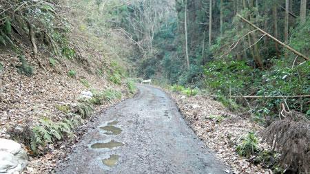 谷戸川沿い