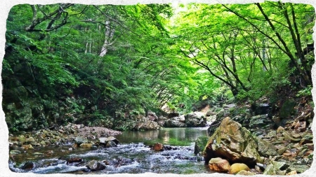 2015 那珂川水系6 (5)