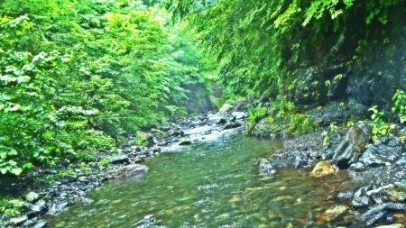 2015 鬼怒川水系4 (3)