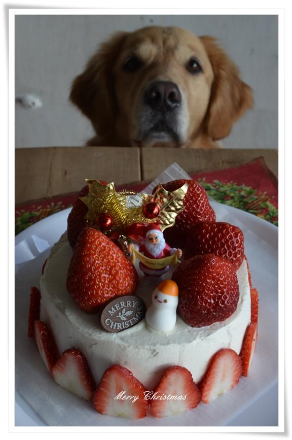 人用クリスマスケーキ201412
