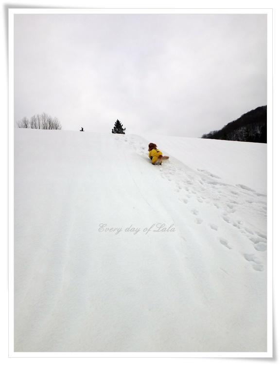 雪山へ201501