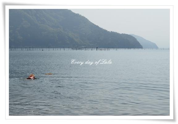 初泳ぎスイス~イ201504
