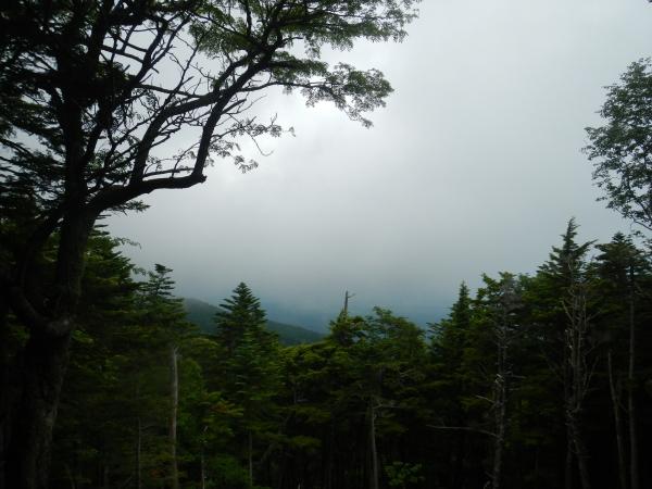 富士吉田登山口 031
