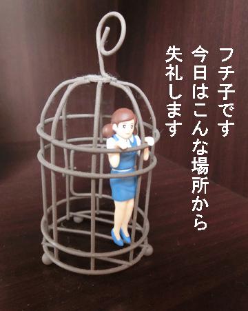 fuchiko20153