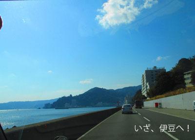 2015-02-izu11.jpg