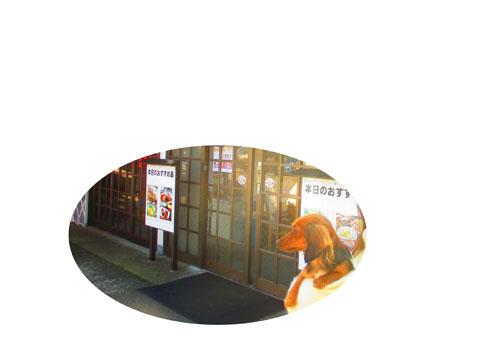 2015-02-izu15.jpg