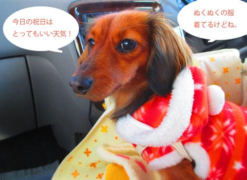 2015-02-izu2.jpg
