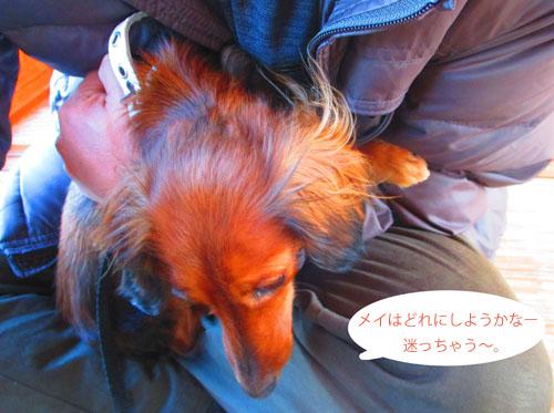2015-02-izu24.jpg