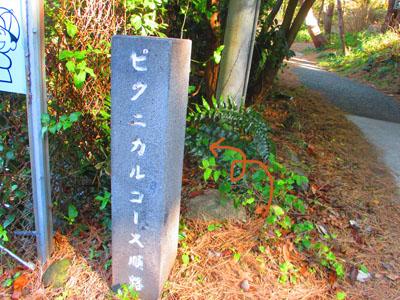 2015-02-izu41.jpg
