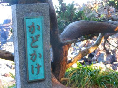 2015-02-izu66.jpg