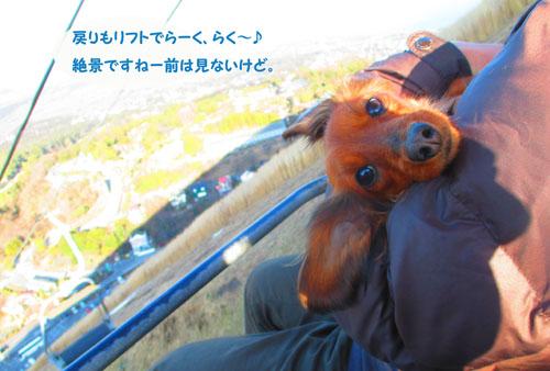 2015-02-izu96.jpg