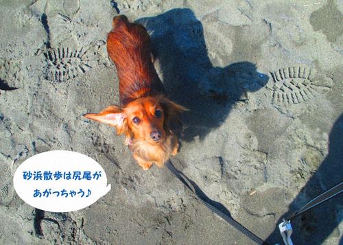 2015-02-umi15.jpg