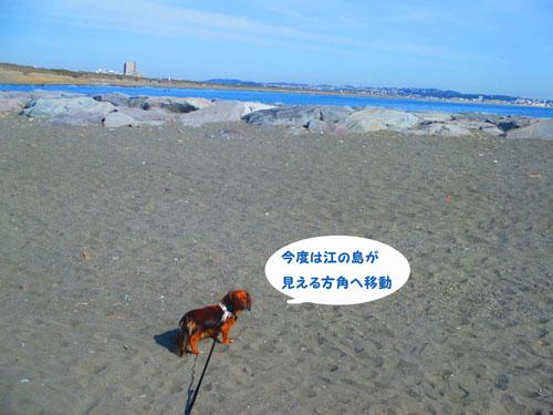 2015-02-umi33.jpg