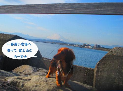 2015-02-umi36.jpg