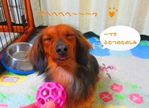2015-03-toy10.jpg