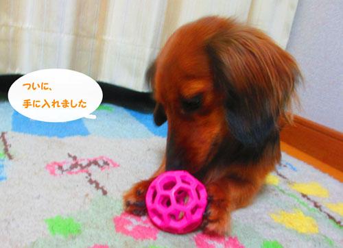 2015-03-toy12.jpg