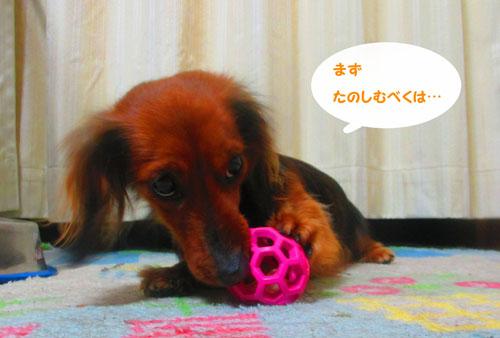 2015-03-toy13.jpg