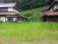 草before