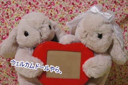 DSC00103_201504072103578db.jpg