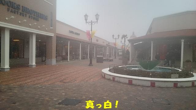 DSC_0248 - コピー
