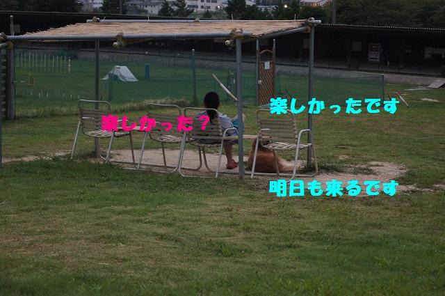 DSC00893.jpg