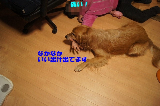 DSC03933.jpg